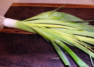 splitting leek