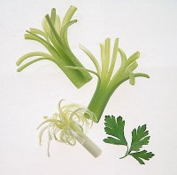 Onion and Celery Garnishes